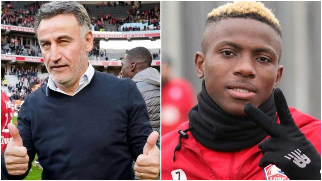 Untitled collage 32 - No Real Madrid offer for Osimhen, says Lille boss